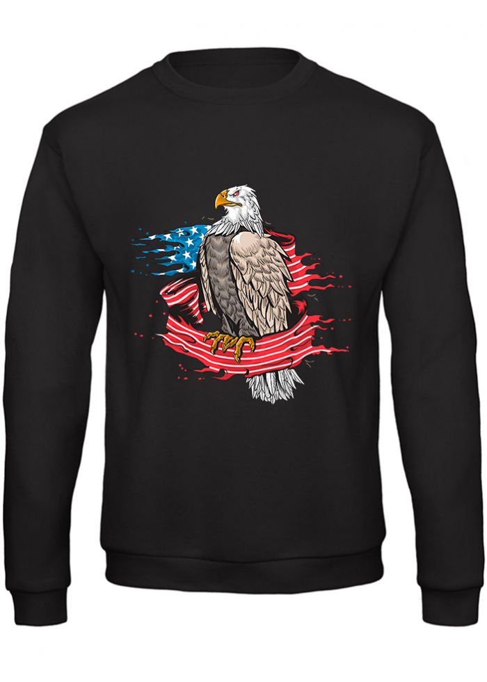 "Felpa uomo ""eagle american flag"" black"